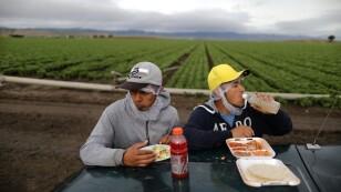 Imagen de archivo de los trabajadores agrícolas mexicanos Jesús Martín Ley Lugo, de 27 años (a la derecha), y Rogelio García Parria, de 20, ambos con visas migratorias H-2A, haciendo una pausa para comer durante la cosecha de lechuca romana en King Ci