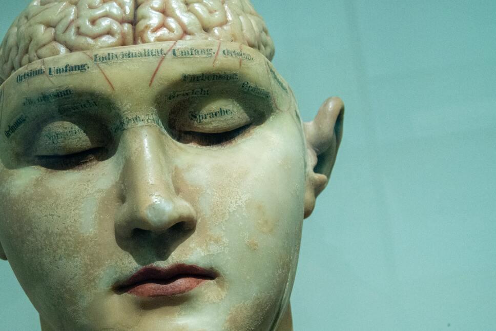 Estudio insinúa signos tempranos de degeneración de Alzheimer