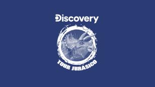 alianzas-jugueton-25-DISCOVERY.png