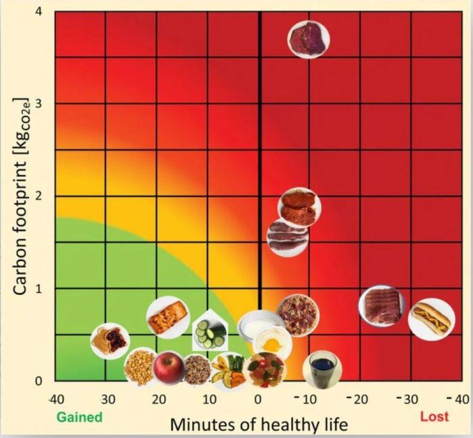 Un hot dog te quita 36 minutos de vida saludable
