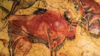La historia del color rojo: de las pinturas rupestres al comercio de los mejorespigmentos