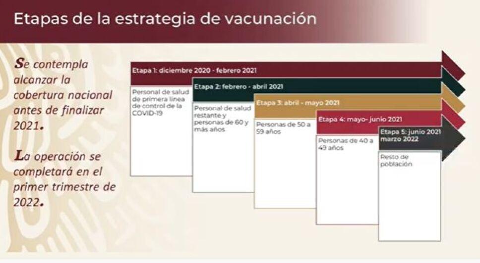 etapas-campaña-vacunacion.jpg