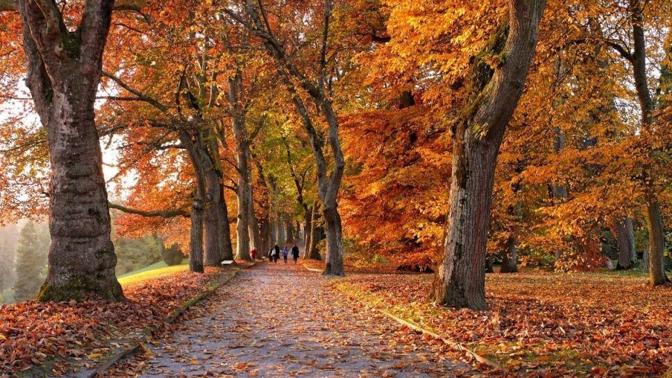 Equinoccio de otoño, cuándo, México c.jpg