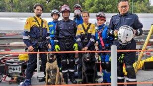 Unidad Canina de Búsqueda y Rescate de la UNAM participa por primera vez en el Desfile Militar 2019