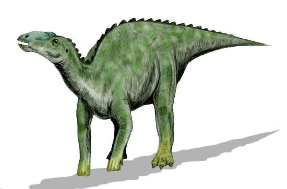 Dinosaurios, México 4.jpg