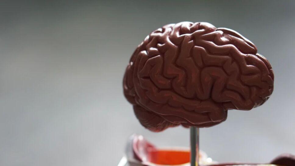70 por cierto de los asintomáticos, presentan afectaciones en órganos