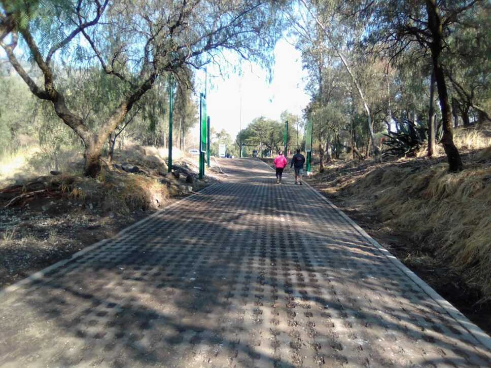 GAM parque