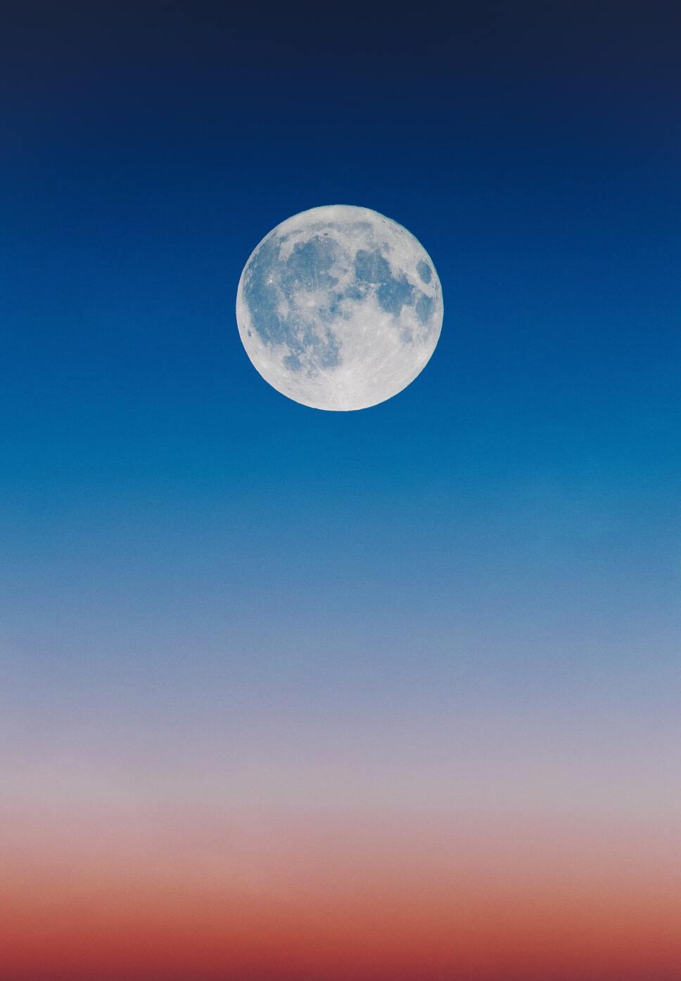 Super Luna, Gusanos, Cómo.jpg