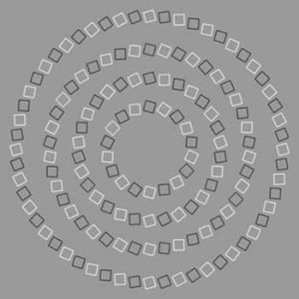 Ilusión óptica, qué es, por qué C.jpg