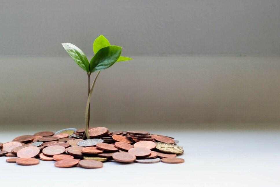 Kakebo: el método japonés que necesitas en tu vida para ahorrar más de 5 mil pesos al mes