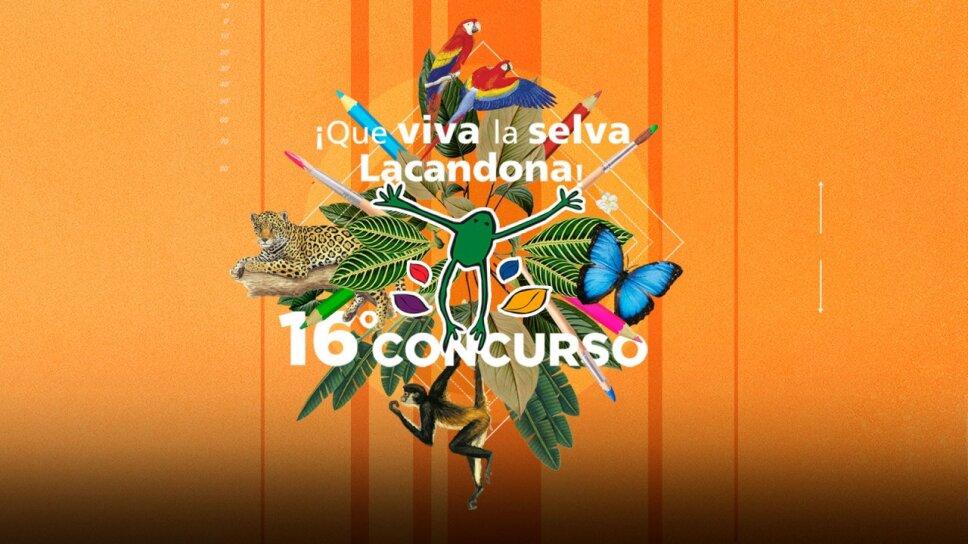 Concurso 16
