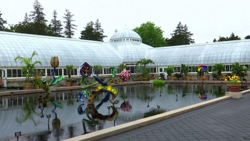 Exposición de Yayoi Kusama llega al Jardín Botánico de NY