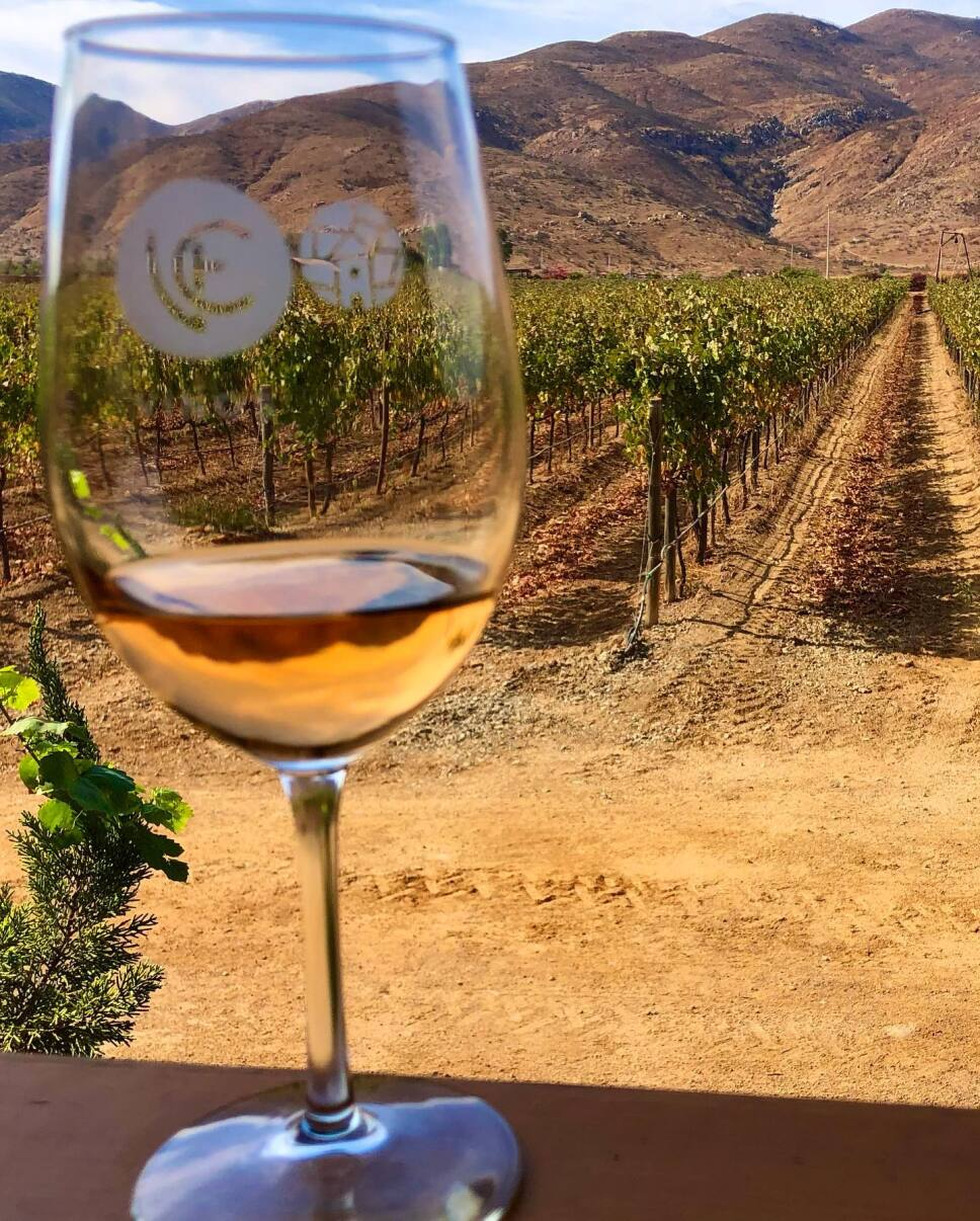 ruta del vino ensenada baja california