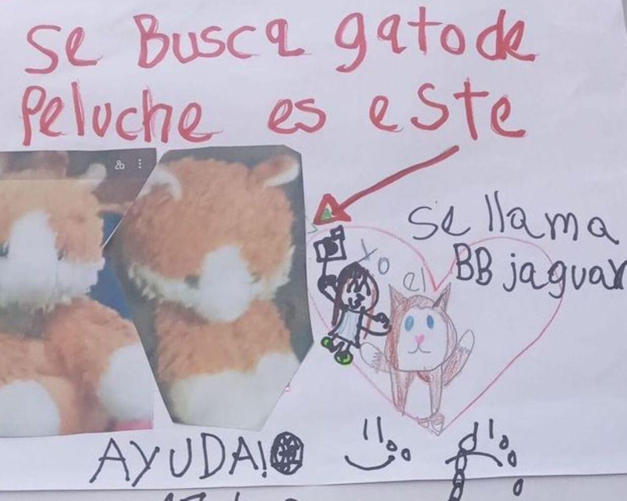gato-peluche-20-pesos-niña (1).jpg