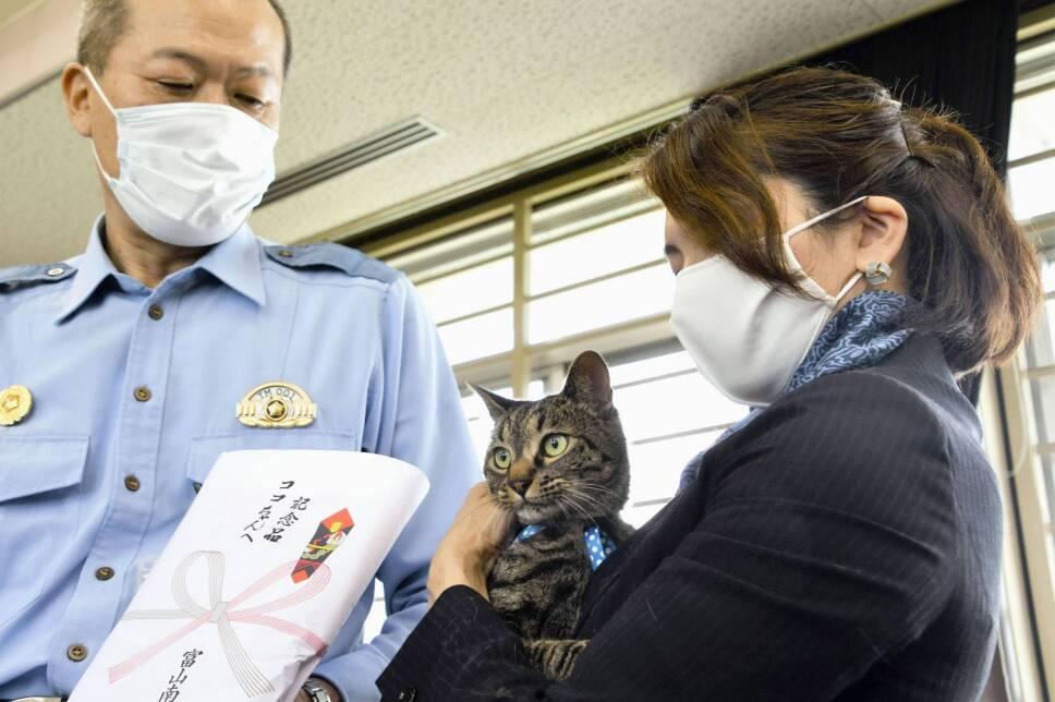 Tomoko Nitta y su gato Koko