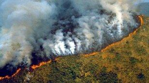 ¡El Amazonas en llamas! Incendios forestales superan los 70 mil en el año en Brasil