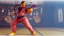 Dan Hibiki street fighter V.jpg