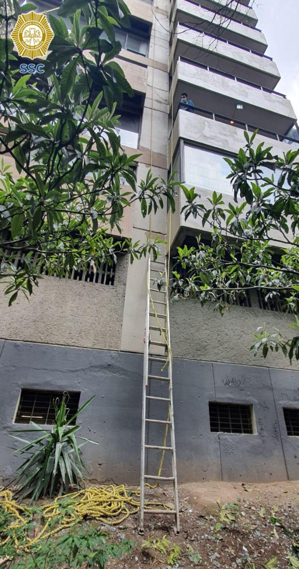 Edificio 12 pisos