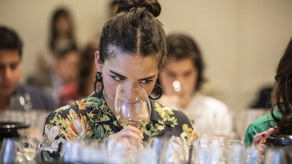 En la Ciudad de México realizaron una cata de vinos premium