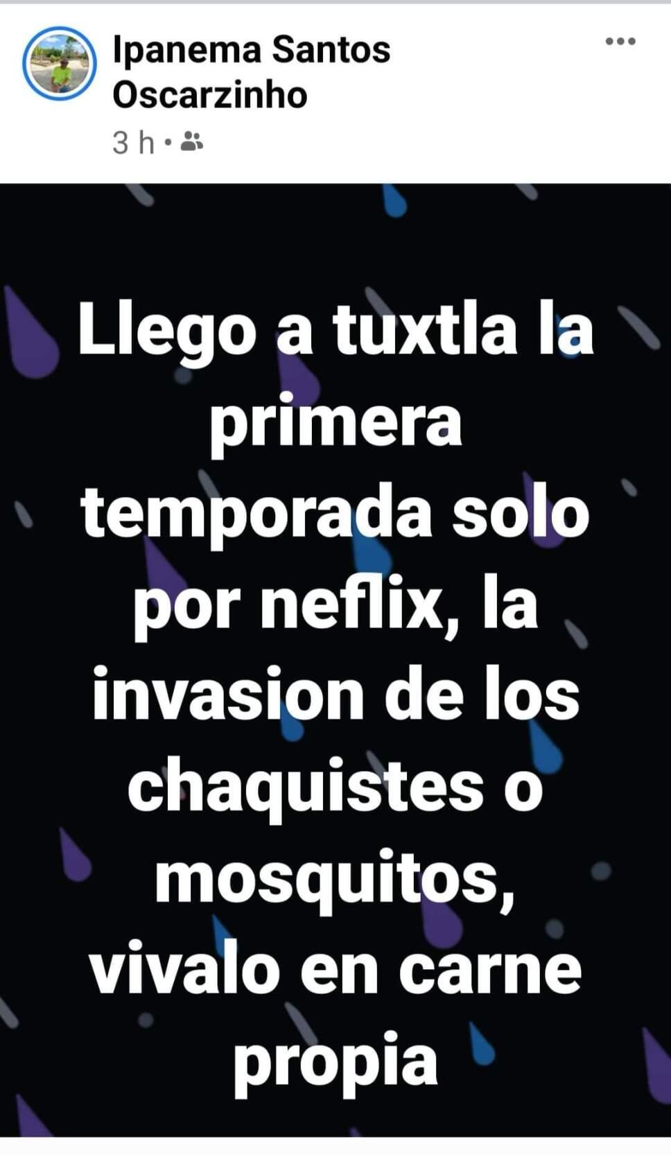 Plaga de CHAQUISTES en Tuxtla Gutierrez (2).jpg