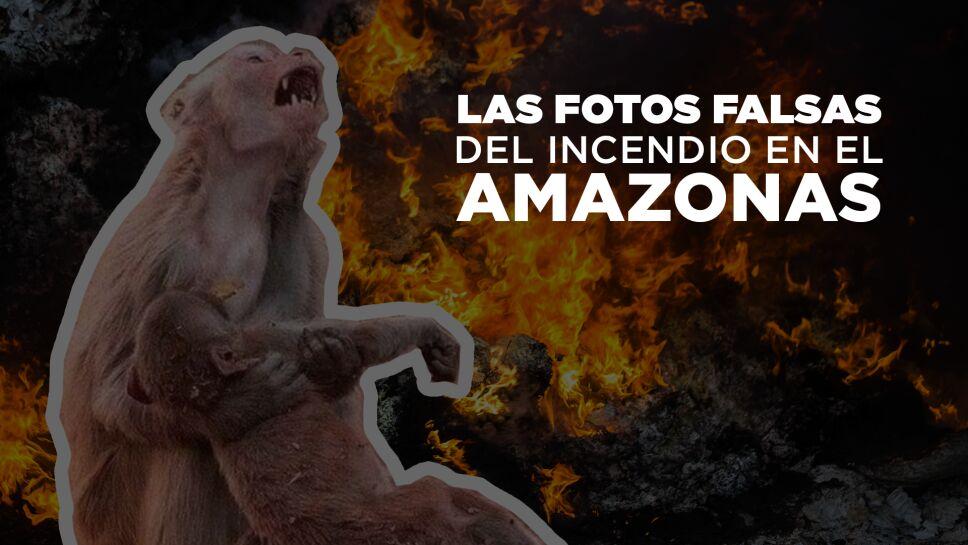amazonas_fake.png