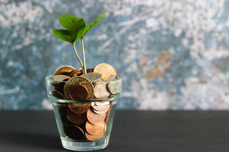 Ahorra, el dinero no crece en los árboles