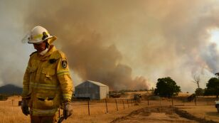 NSW Surveys Damage Following Bushfires As Easing Conditions Bring Some Reprieve