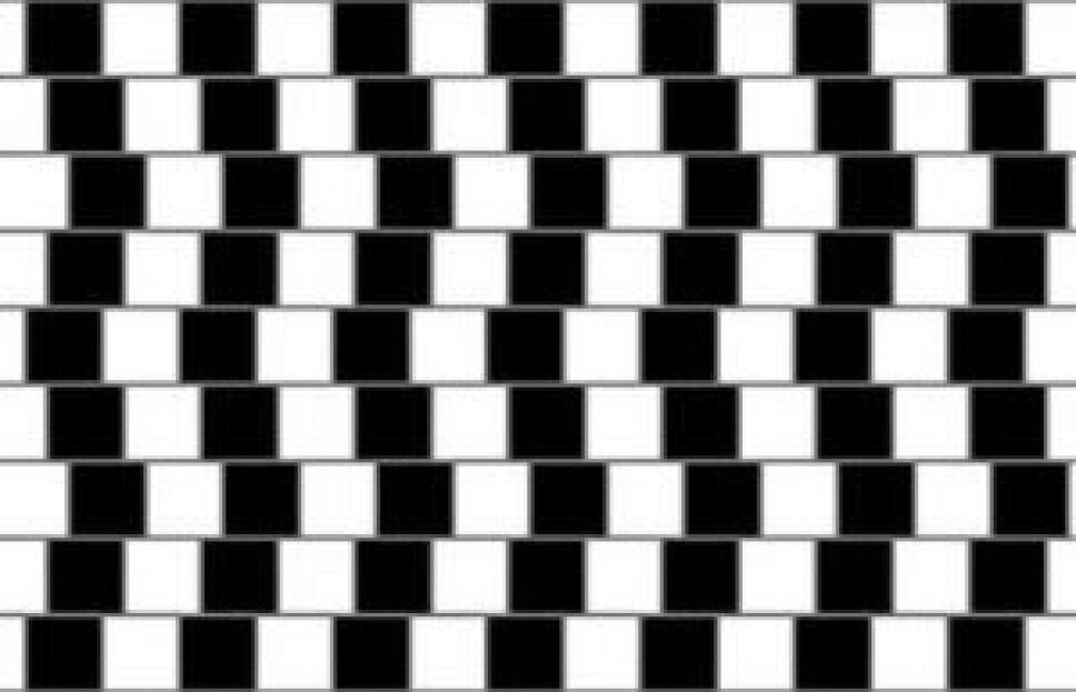 Ilusión óptica, qué es, por qué D.jpg
