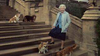 Reina isabel con sus perros