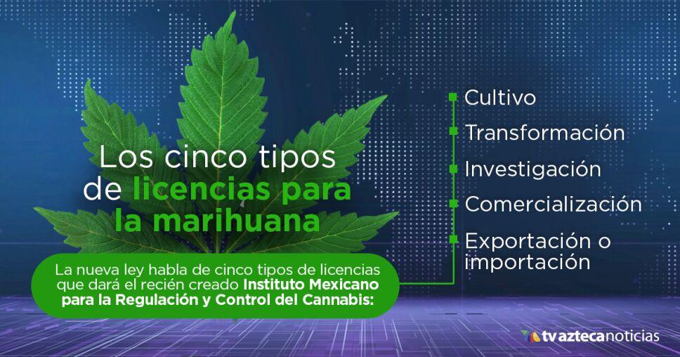 Licencia Marihuana
