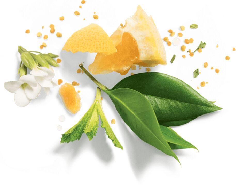 Aceite de moringa - Limpia suavemente y nutre para conseguir un pelo liso.png