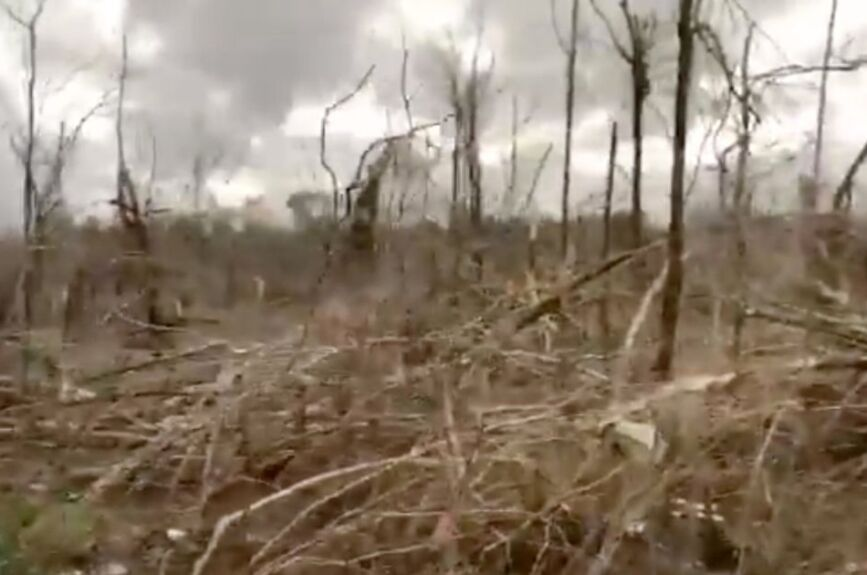 Tornados en Alabama, EEUU, deja al menos 10 muertos
