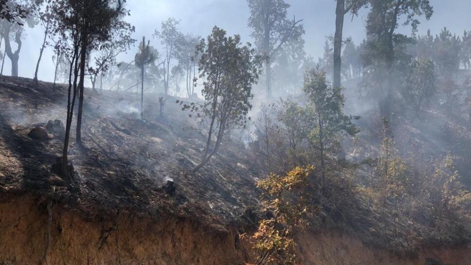 Arde cerro La Joyita en Agostitlán (1).jpeg