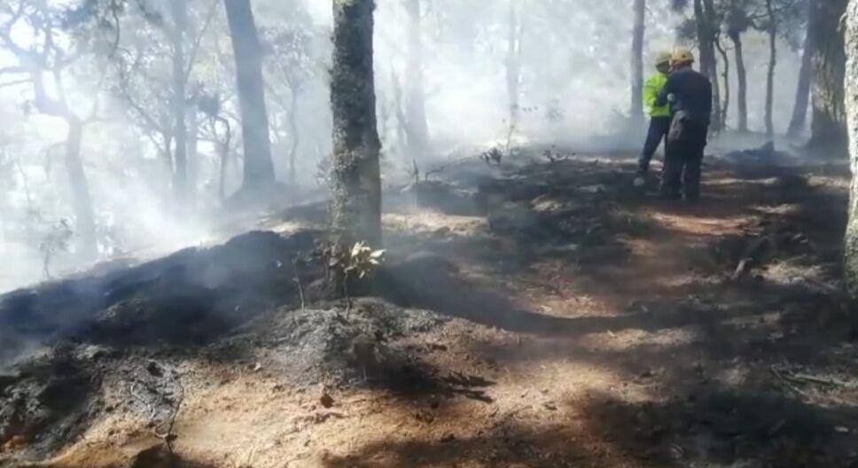 Emergencia por incendios en Oaxaca 2.PNG