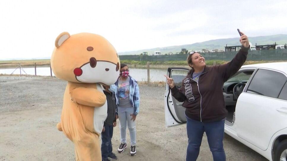 """""""Bearsun"""", el oso que camina para recaudar fondos"""