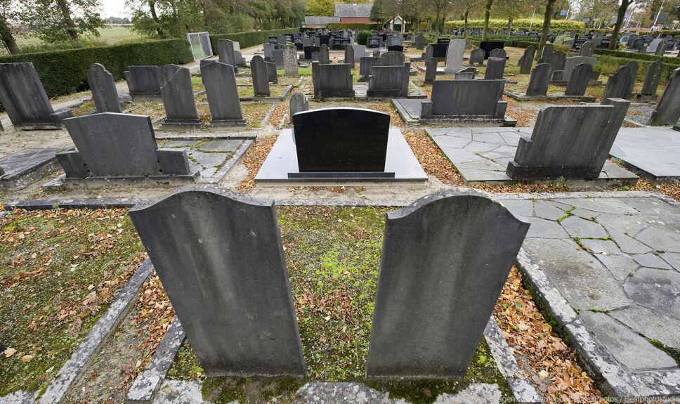 ddc cementerio