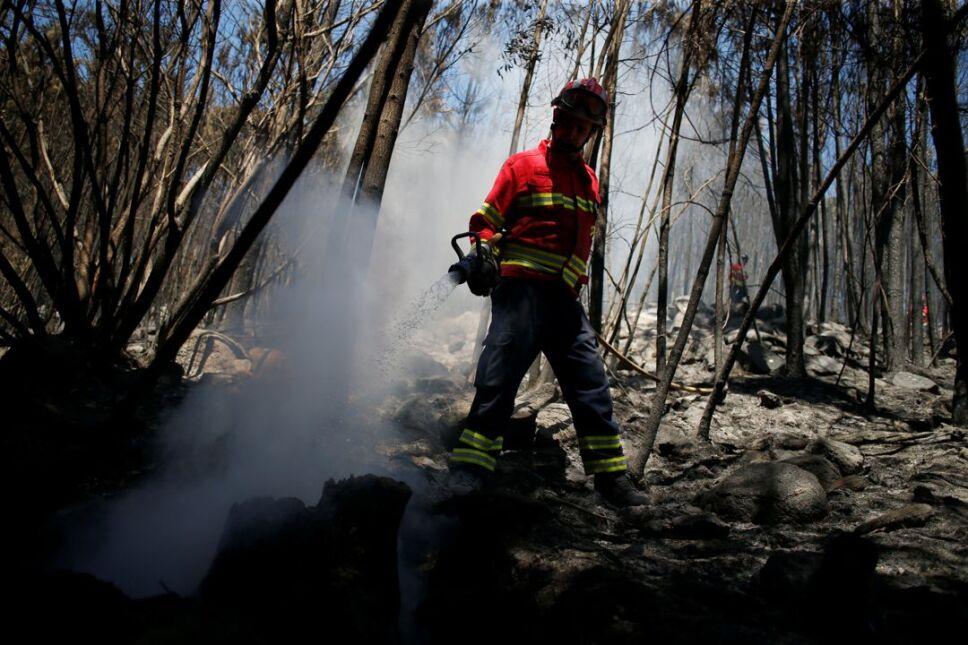 bombero portugal incendio forestal