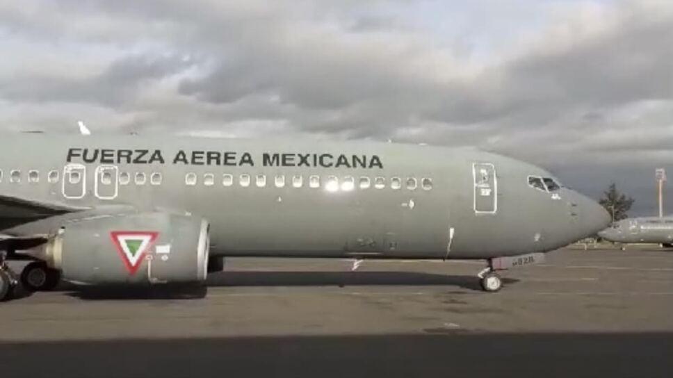 avion cenizas jose jose