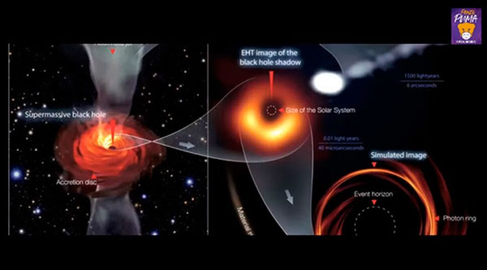 Campos magnéticos de un agujero negro
