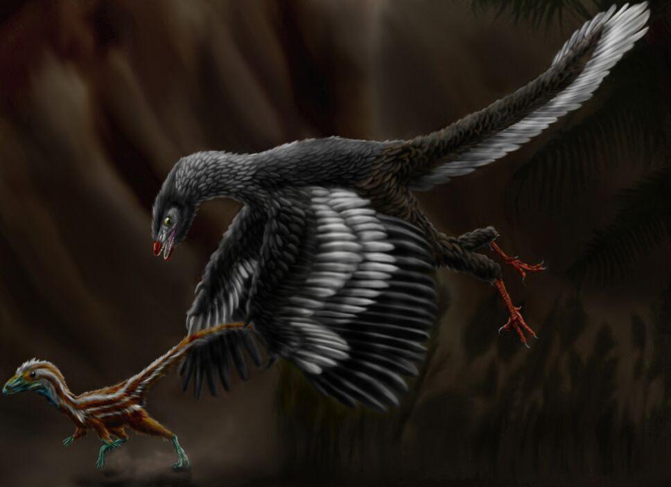 Pluma, fósil, dinosaurio.jpg