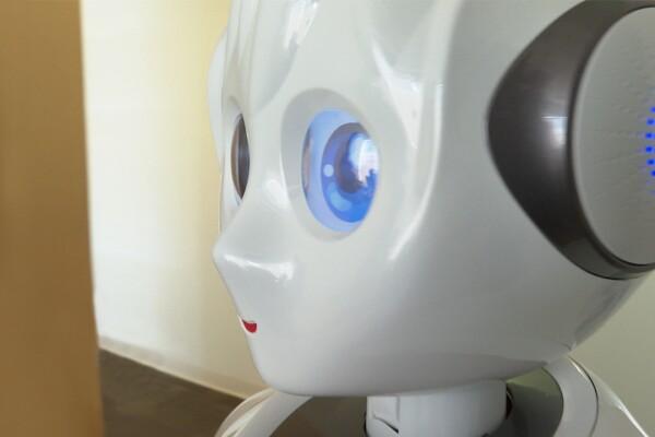foto_robot.jpg