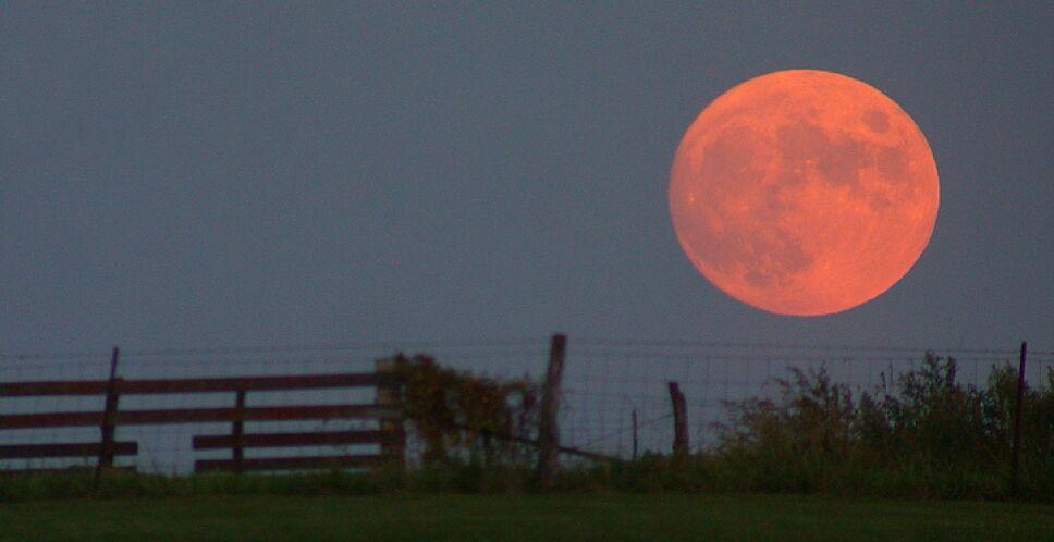 Eclipse de luna, 26 de mayo.jpg