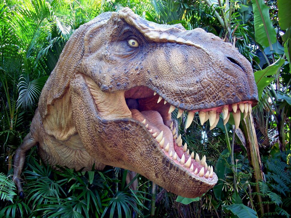 Tiranosaurios b.jpg