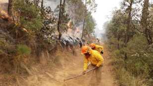 incendio-mexico.jpg