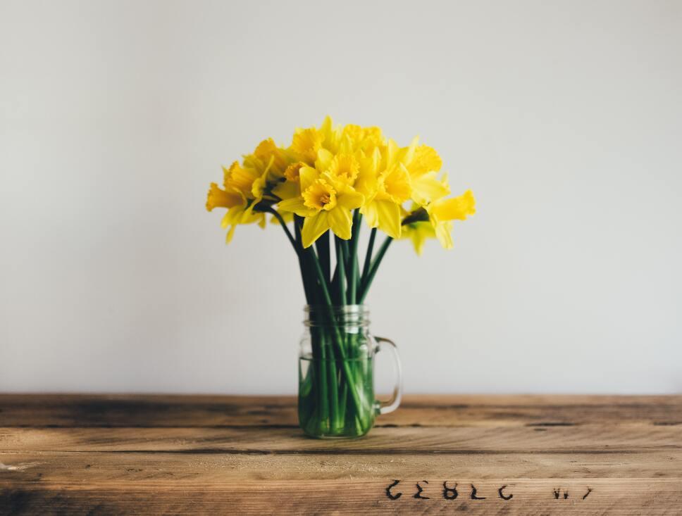 Cómo recibir la primavera en casa