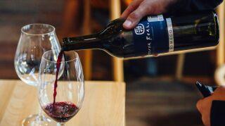 domecq vino tinto mexicano del valle de guadalupr