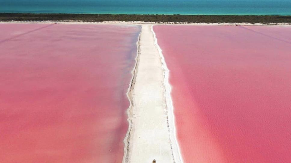 laguna rosa interior1