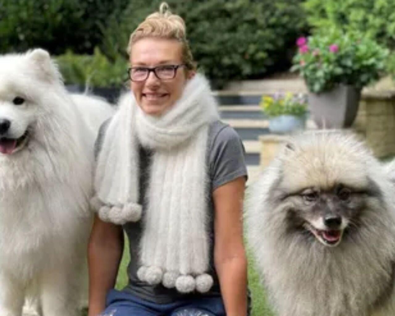 perros-bufanda.jpg