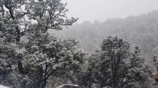 Así el paisaje nevado en Chihuahua