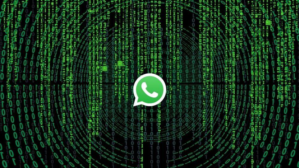 WhatsApp, sticker, vulnerable b.jpg